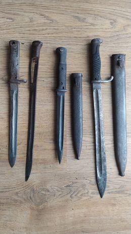 Bagnety liść niemiecki i dwa zastępcze