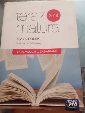 Język polski vademecum