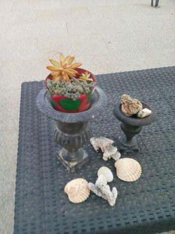 Vasos casa/jardim