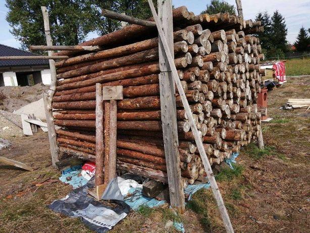 ponad 20 szt STEMPLI ok 250 cm budowlanych drewnianych sprzedam