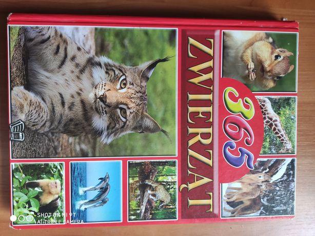 Książka 365 Zwierząt