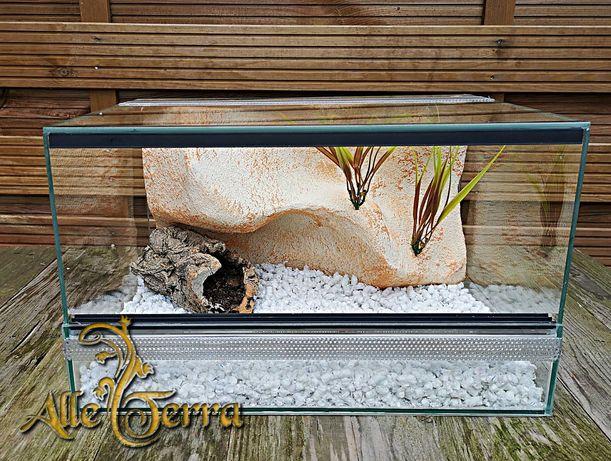 Terrarium szklane z wystrojem 40x30x24 cm.