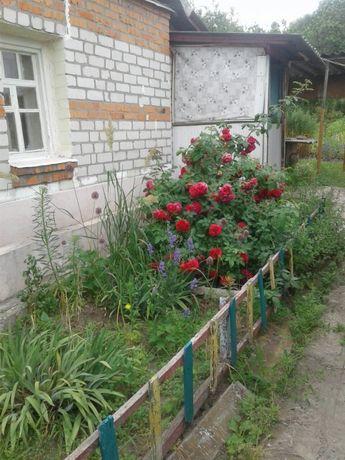 Цена снижена!!! Дом в Змиевском районе