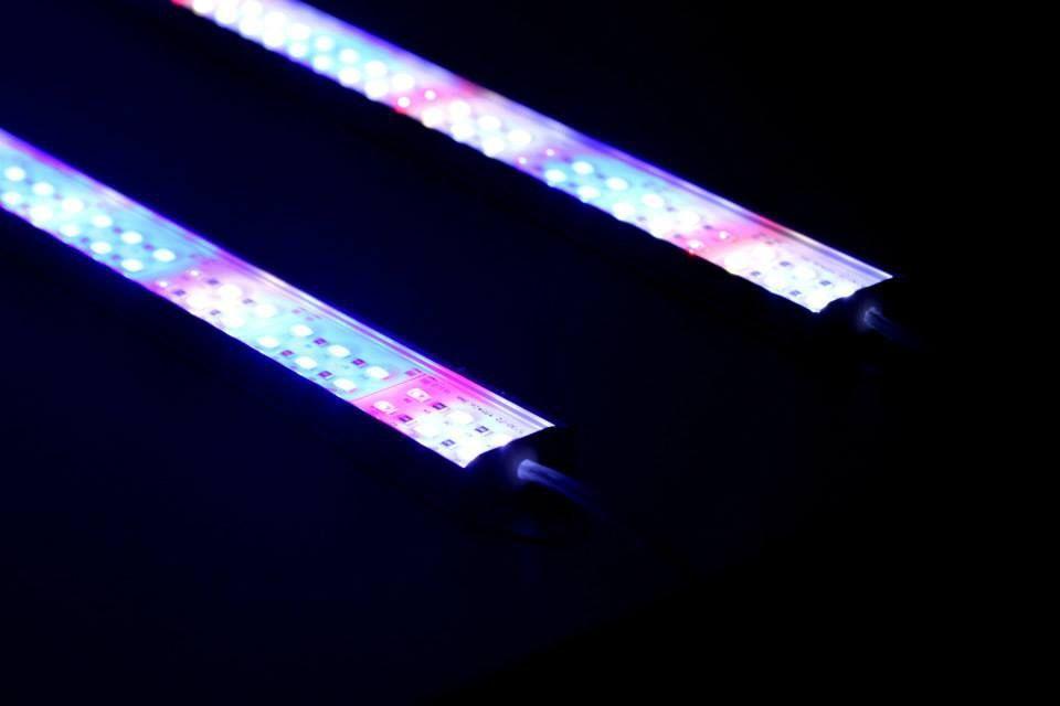 Barras led especificas para aquario 64w 8640 lumens
