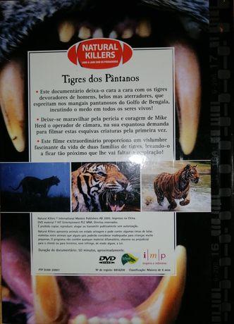 Livro com DVD tigres dos pântanos