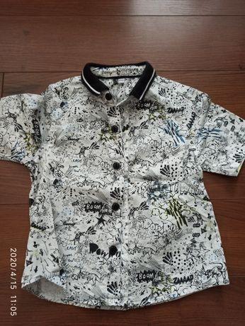 Koszula 12-18 miesiecy dla chlopca