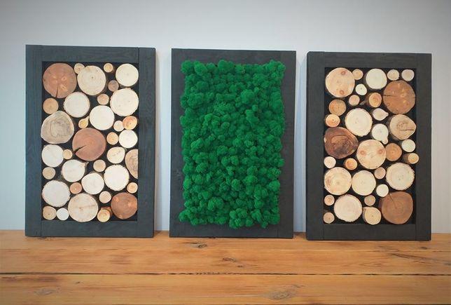 Obraz tryptyk mech chrobotek, plaster drewna, panel, ramka, wysyłka