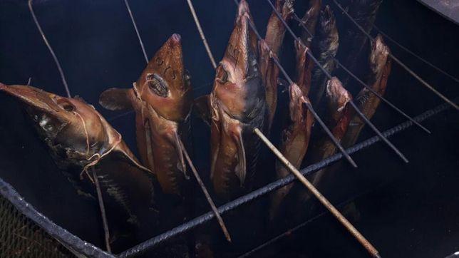 Wedzone ryby