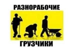 Грузчики. Вантажники.Демонтаж.Різоробочі.Квартирні переїзди. Киев - изображение 1