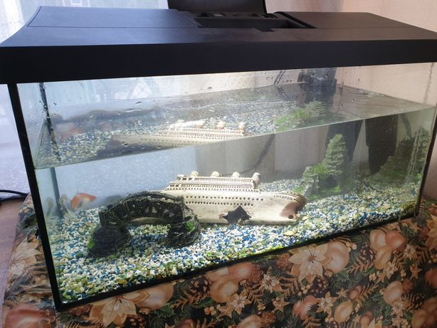 Akwarium 54L 60x30x30 z oświetleniem i pokrywą