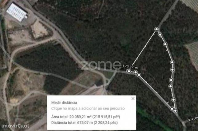 Terreno florestal 20000 m2 em Vilarinho das Cambas