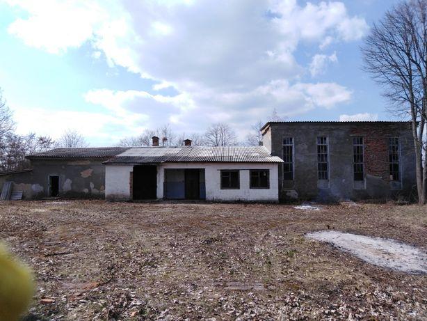 Бойня Худобозабійний пункт, комплекс будівель