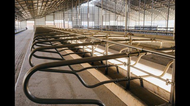 Ангар, склад, ферма, колони. Корівник 60*182*4,5*14(коровник).