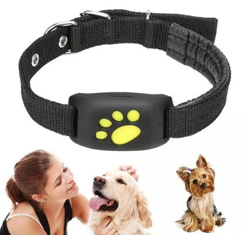 Localizador GPS para animais com função GPS para cães+gatos/Função SOS