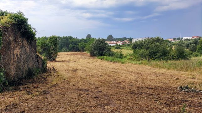 Terrenos Exploração Agrícola ou Pecuária