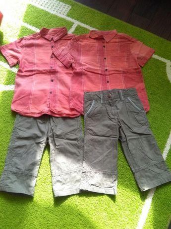 Koszule Zara plus spodenki dla bliźniaków