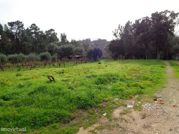 Terreno rústico, 2150m2, Amoreira Da Gandara