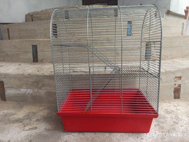 Клітка для пацюка