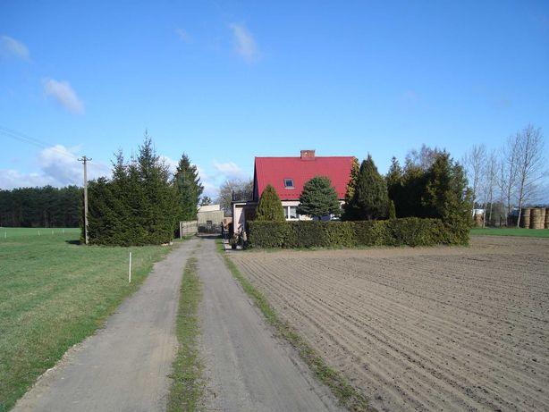 Gospodarstwo rolne - dom + magazyny + garaże + ziemia + łąki