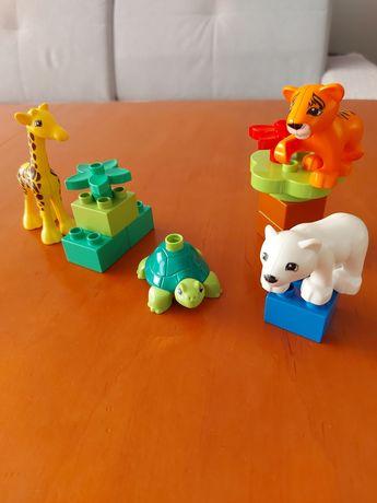 Klocki Lego Duplo Zwierzątka Zoo 10801