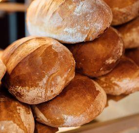 Chleb dla zwierząt, 70gr/bochenek,  możliwość transportu
