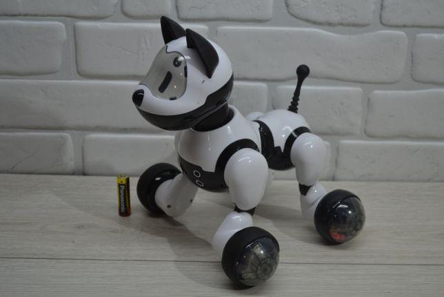 Интерактивная собака CS Toys
