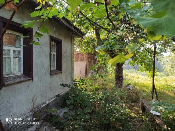 Продам будинок з участком в Миргороді