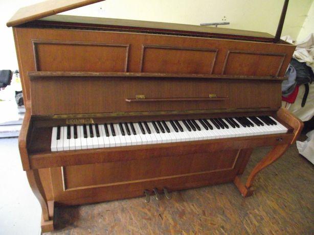 Pianino Legnica akustyczne