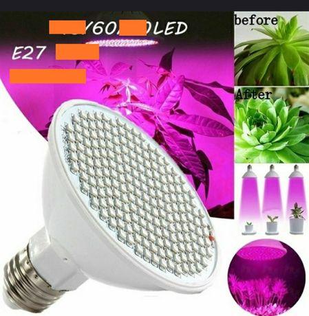 Фитолампа 60 led E27 , лампа для растений , фито лампа led лампа
