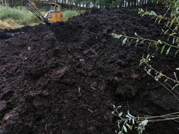 torf czarnoziem substrat (jerzyny borówki warzywa) po badaniu glebowym