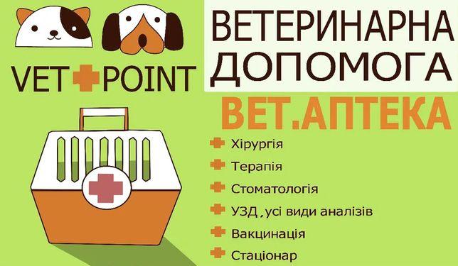 Ветеринар в Вишневом, вызов на дом