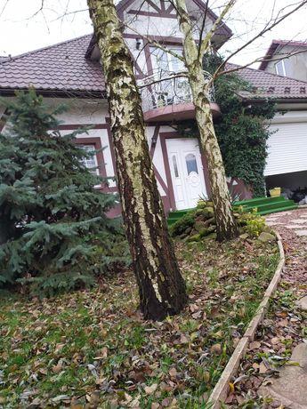 Продам дом с дизайнерским ремонтом.