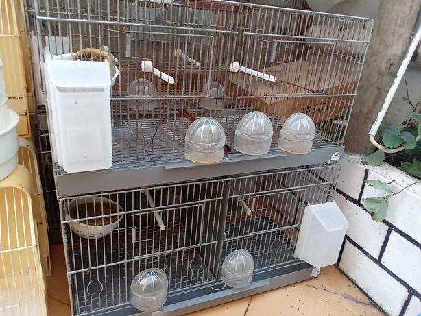Viveiros para criação de canarios e várias gaiolas de pássaros