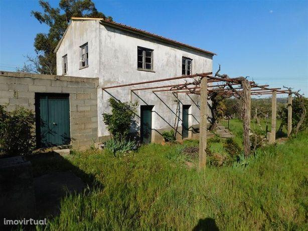 Terreno para recuperar Valverde Fundão