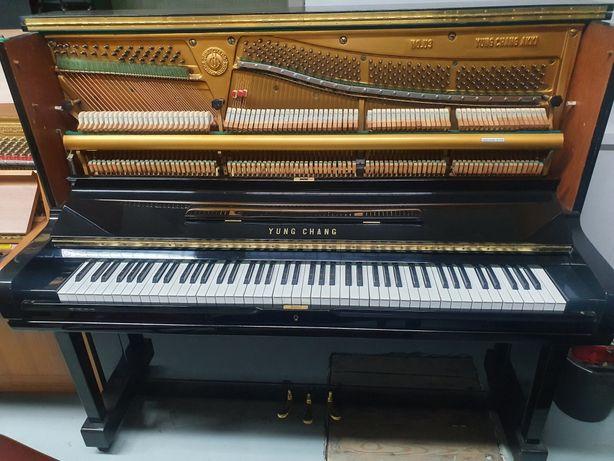 Pianino U3 Young Chang, czarny wysoki połysk. 131cm