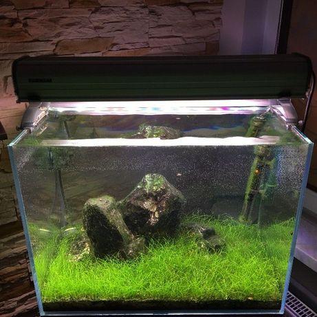 Okazja KNO3 azot nawóz roślin akwarium azotany azotan