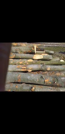 Sprzedam dluzyce BUK drewno Drzewo tartaczne kominkowe tartaczne