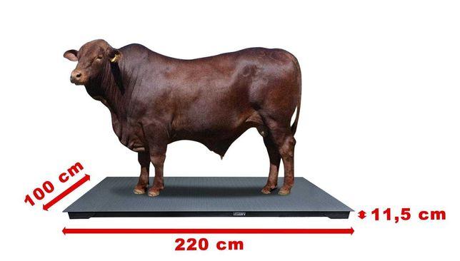 Waga 1,2x2,2 inwentarzowa do ważenia zwierząt