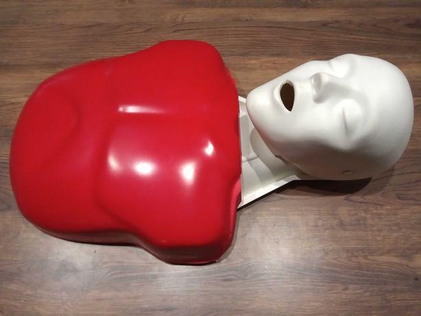 Fantom manekin pierwszej pomocy Basic Buddy
