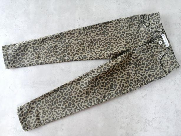 Spodnie Zara, panterka, nowe, bez metek, 122cm