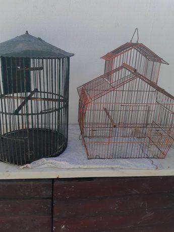 Gailas para pássaros