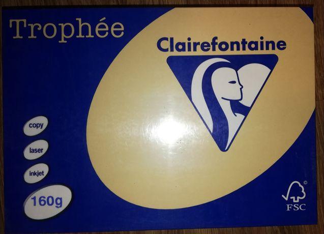 Papier A4 6x250szt Clairefontaine Trophée 160g Chamois
