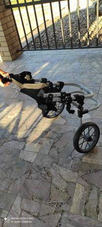 Wózek dla psa inwalidzki