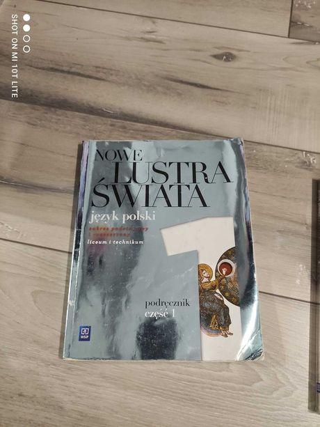 Podręcznik do języka polskiego Lustra Świata 1 WSIP