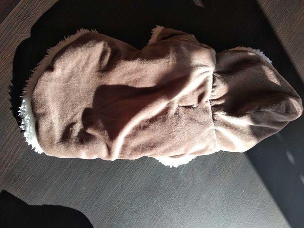 Ubranko dla psa rasy chihuahua