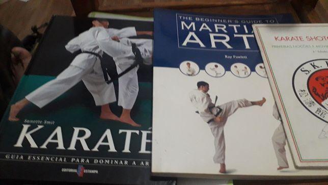 Artes marciais  Pack