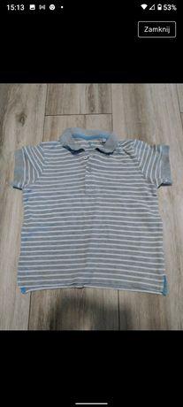 T-shirt koszulka polo firmy Lupilu rozmiar 104-110cm.