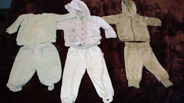 Dresy, spodnie bluza, czapka, spodenki, 7-12 m-cy