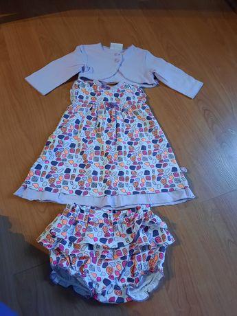 Komplet, zestaw sukienka bolerko r. 62 coccodrillo