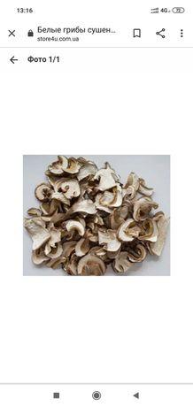 Продам білий сушений гриб